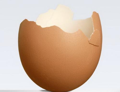 Thần dược vỏ trứng gà