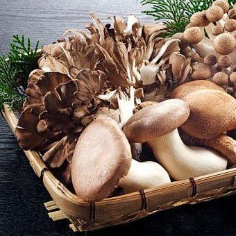 Mẹo bảo quản các loại nấm